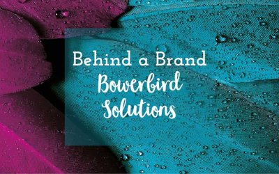 Behind a Brand | Bowerbird Solutions