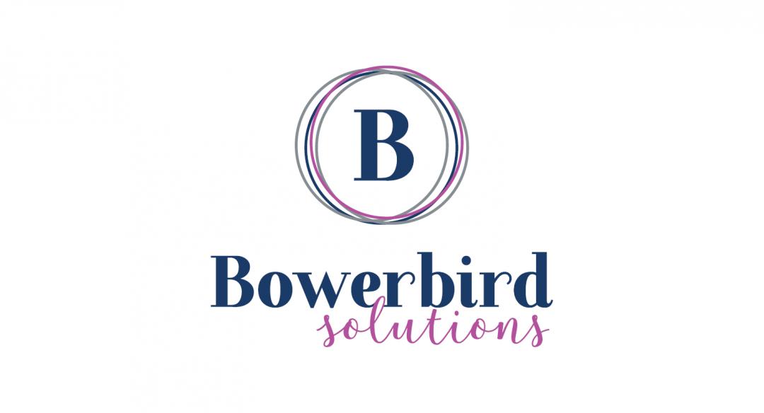 bowerbird solutions