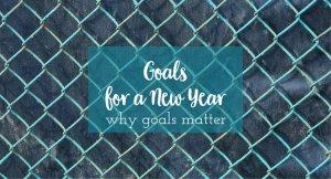 goals for a new year why goals matter