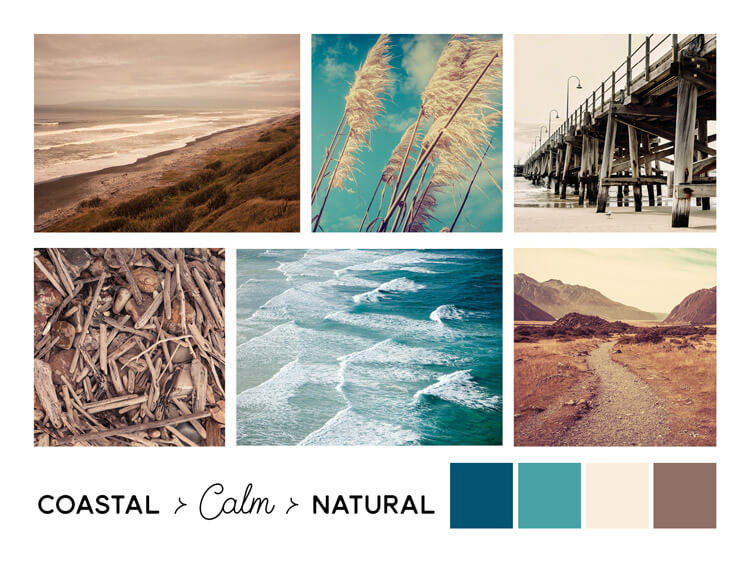 coastal calm natural moodboard beachy style for cafe or homewares store